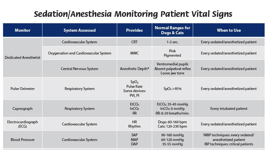 Sedation/Anesthesia Monitoring Patient Vital Signs
